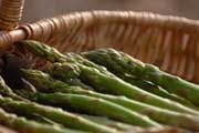 Picture - Pasture Lane Asparagus