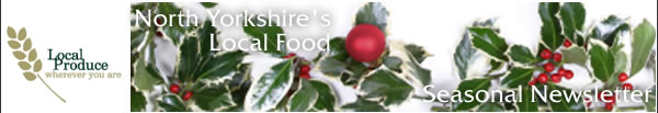 Christmas Seasonal Newsletter Header